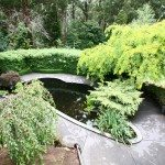 gardens with pond